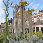 Kerk voorjaar met bloemen