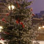 Wit Delfshaven met kerstboom